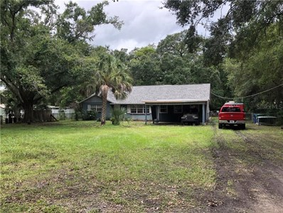 8108 N Packwood Avenue, Tampa, FL 33604 - MLS#: U8048658
