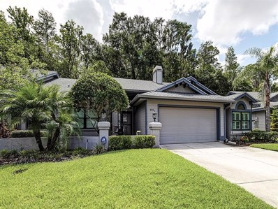 885 Lucas Lane, Oldsmar, FL 34677 - MLS#: U8049198