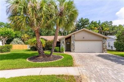 11916 Steppingstone Boulevard, Tampa, FL 33635 - #: U8049254