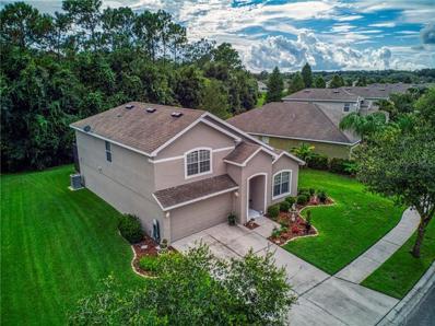 12055 Colony Lakes Boulevard, New Port Richey, FL 34654 - MLS#: U8055820
