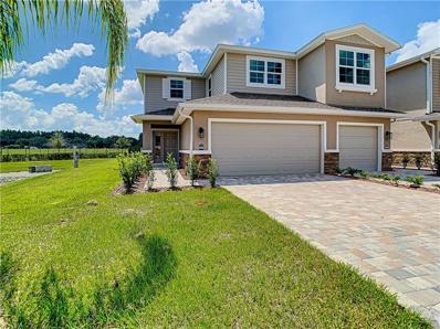 5500 Riverwalk Preserve Drive, New Port Richey, FL 34653 - #: U8058905