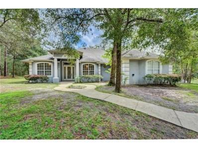 1517 S Blue Lake Avenue, Deland, FL 32724 - #: V4720556