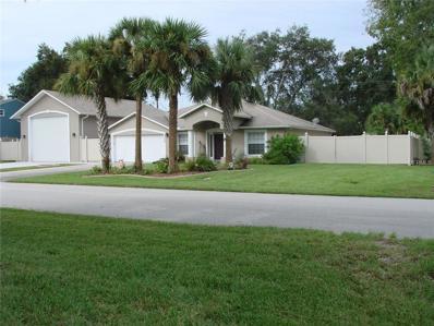 2404 Travelers Palm Drive, Edgewater, FL 32141 - MLS#: V4720599