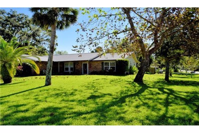 1703 Lime Tree Drive, Edgewater, FL 32132 - MLS#: V4721440