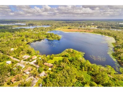 307 N Blue Lake Terrace, Deland, FL 32724 - MLS#: V4721550