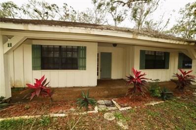 11 Rio Pinar Trail, Ormond Beach, FL 32174 - MLS#: V4721936