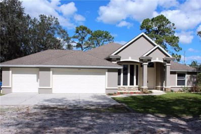 704 Lake Emerald Avenue, Orange City, FL 32763 - MLS#: V4722533
