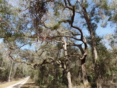 Forsythe Road, Lake Helen, FL 32744 - MLS#: V4722877