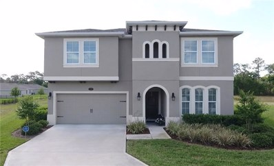335 W Freesia Court, Deland, FL 32724 - MLS#: V4723929