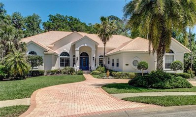 3791 Carrick Drive, Ormond Beach, FL 32174 - MLS#: V4900024