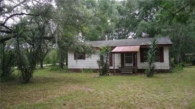 245 Orange Boulevard, Osteen, FL 32764 - MLS#: V4900738