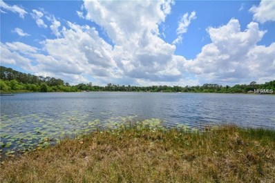 16 Tymber Cove, Deland, FL 32724 - MLS#: V4900900