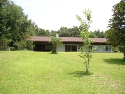 242 Tangerine Avenue, Lake Helen, FL 32744 - MLS#: V4902008