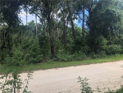 201 Wildwood Road, Deland, FL 32720 - MLS#: V4902075