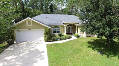 11 Rainbrook Drive, Palm Coast, FL 32164 - #: V4902852