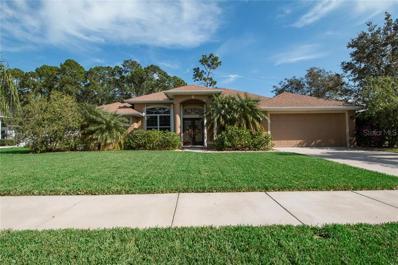 11 Aucuba Circle, Ormond Beach, FL 32174 - MLS#: V4904213