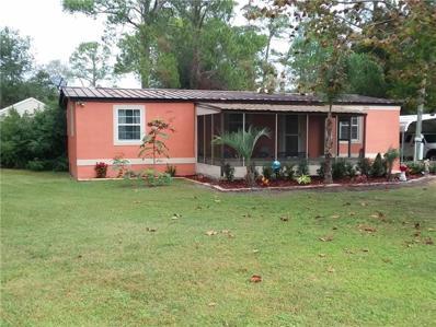 31353 Evergreen Drive, Deland, FL 32720 - #: V4904313