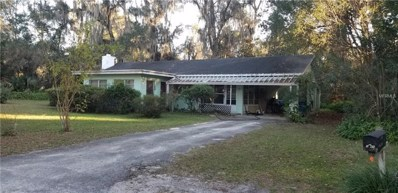 1600 Ace Park Drive, Orange City, FL 32763 - MLS#: V4905075