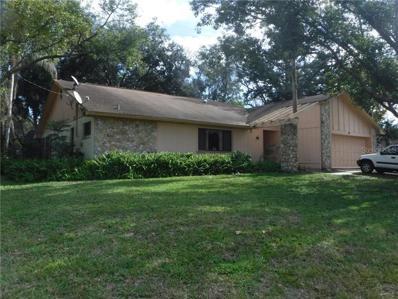 407 N Pine Meadow Drive, Debary, FL 32713 - MLS#: V4905119