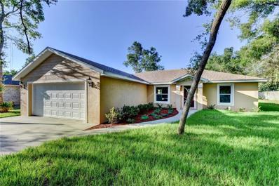 2454 W Orange Road, Deland, FL 32724 - #: V4905617