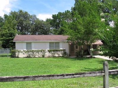 117 Alano Road, Debary, FL 32713 - #: V4908602