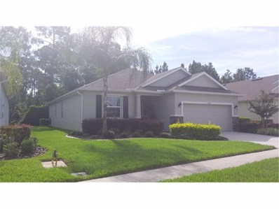 11036 Paradise Point Way, New Port Richey, FL 34654 - MLS#: W7631830