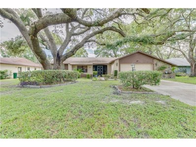 9661 Horizon Drive, Spring Hill, FL 34608 - MLS#: W7631928
