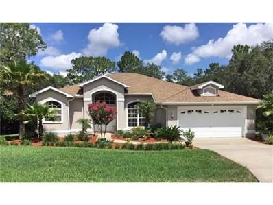 28 Black Willow Court N, Homosassa, FL 34446 - MLS#: W7633208