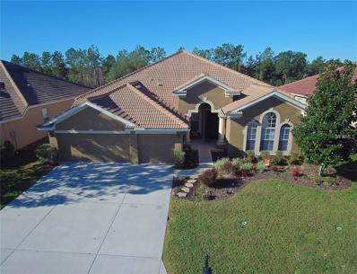 11316 Biddeford Place, New Port Richey, FL 34654 - MLS#: W7633306