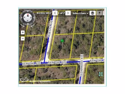 13301 Rain Owl Avenue, Weeki Wachee, FL 34614 - MLS#: W7633580