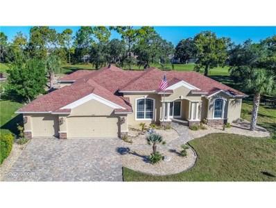 10341 Palmgren Lane, Spring Hill, FL 34608 - MLS#: W7634857