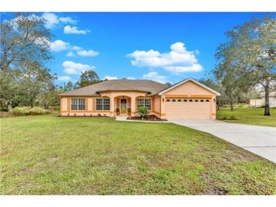11501 Deep Creek Drive, Spring Hill, FL 34609 - MLS#: W7635326
