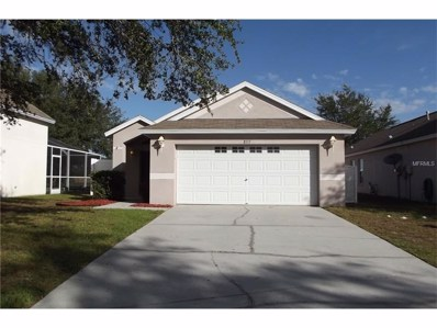 8717 Persea Court, Trinity, FL 34655 - MLS#: W7635347