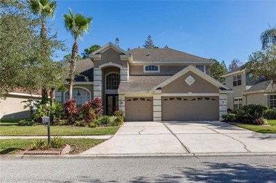 11317 Minaret Drive, Tampa, FL 33626 - MLS#: W7635645