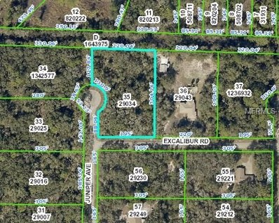 7166 Juniper Avenue, Webster, FL 33597 - MLS#: W7636326