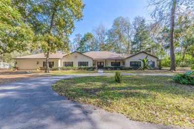 26063 Olympia Road, Brooksville, FL 34601 - MLS#: W7636419
