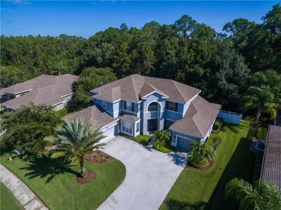 16144 Ivy Lake Drive, Odessa, FL 33556 - MLS#: W7636631
