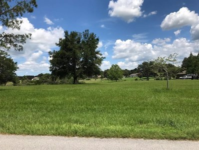 Hancock Bluff Road, Dade City, FL 33523 - MLS#: W7636934