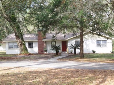 6233 Emerson Road, Brooksville, FL 34601 - MLS#: W7637821