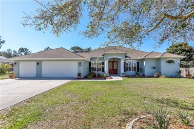 13194 Amber Woods Street, Spring Hill, FL 34609 - MLS#: W7639008