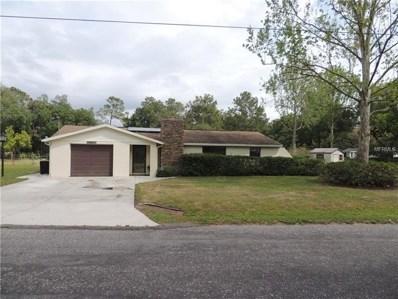 11911 Lakewood Drive, Hudson, FL 34669 - MLS#: W7639670