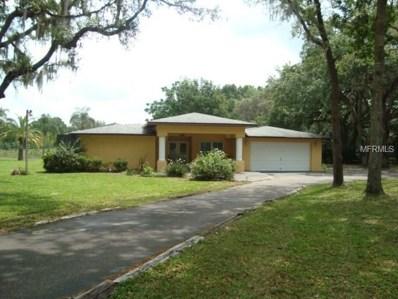 11280 Pine Forest Drive, New Port Richey, FL 34654 - MLS#: W7800665