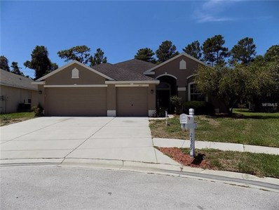 2829 Ravendale Lane, Holiday, FL 34691 - MLS#: W7800745