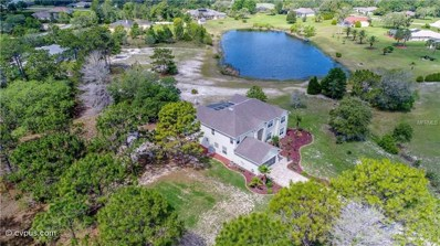 11000 Gig Avenue, Weeki Wachee, FL 34613 - MLS#: W7800973