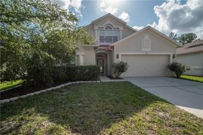 6713 Bluff Meadow Court, Wesley Chapel, FL 33545 - MLS#: W7801561