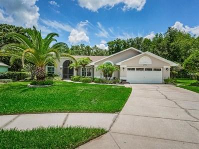 1339 Saffron Way, Trinity, FL 34655 - MLS#: W7801576