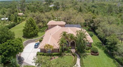 414 Westgate Road, Tarpon Springs, FL 34688 - MLS#: W7801610
