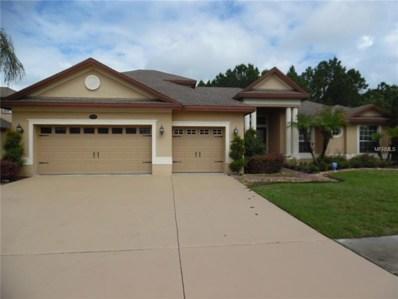 16208 Ivy Lake Drive, Odessa, FL 33556 - MLS#: W7801845