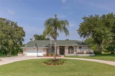 8809 Skymaster Drive, New Port Richey, FL 34654 - MLS#: W7801893