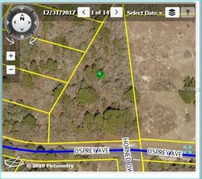 12395 Osprey Avenue, Weeki Wachee, FL 34614 - MLS#: W7802327